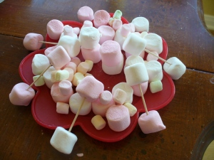 by J - age 4 1/2 - she wanted you to see the lights, which are the marshmallows on the toothpicks