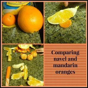 comparing oranges