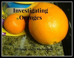 investigating oranges title