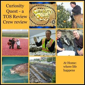Curiosity Quest title