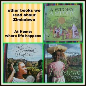 books on Zimbabwe