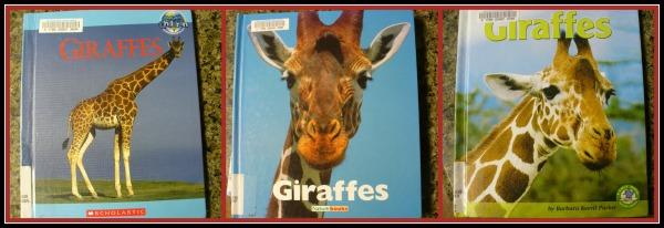 G - giraffe books