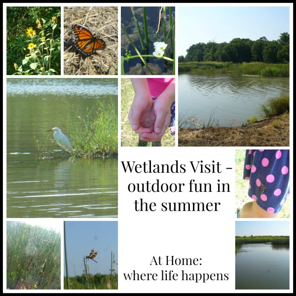 title collage wetlands