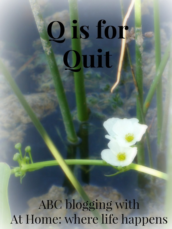 Q is for Quit