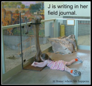T field journal