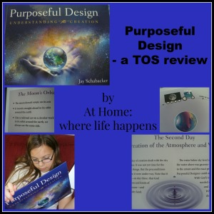 Purposeful Design cover