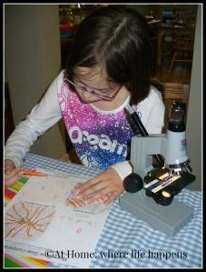 M microscope work