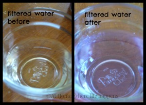 T filtered water