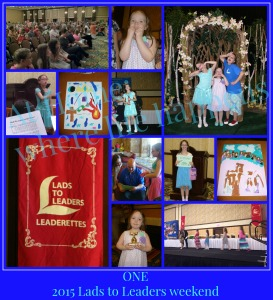 2015 L2L collage