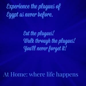 Experience the Plagues