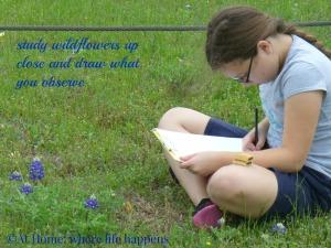 W study wildflowers