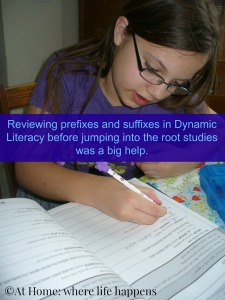 Dynamic Literacy affixes study