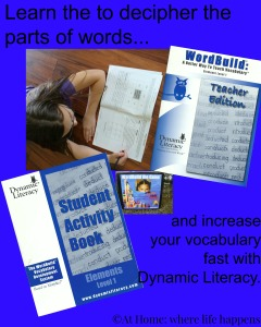 Dynamic Literacy deciphering the parts of words