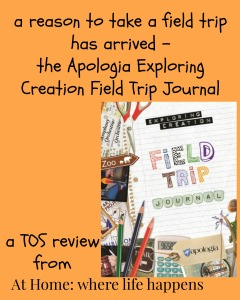 Expoloring Creation Field Trip Journal