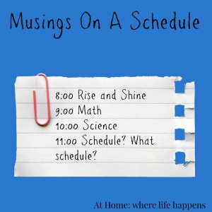 Musings on a Schedule