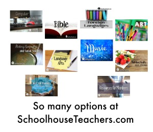 SchoolhouseTeachers options
