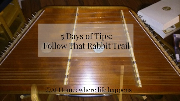Follow That Rabbit Trail