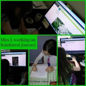 Miss L working on Rainforest Journey