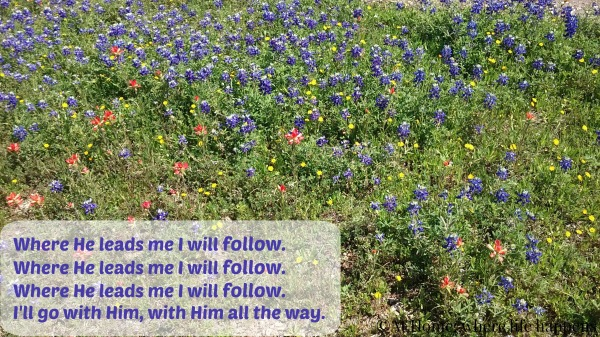 Where He leads me I will follow