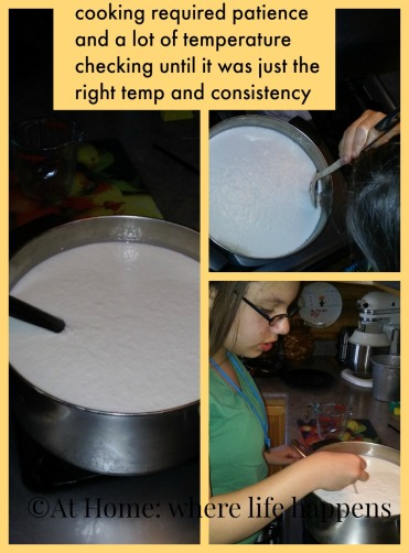 mozzarella cooking and temperatures
