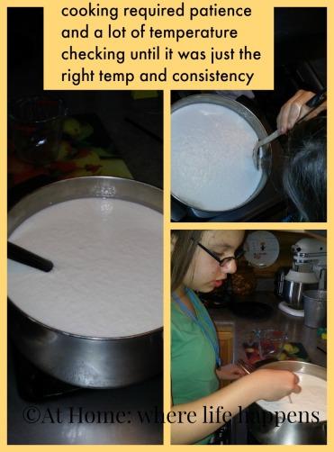 mozzarella cooking and temperatures