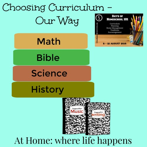 choosing curriculum our way
