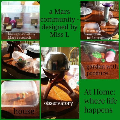 mars-community