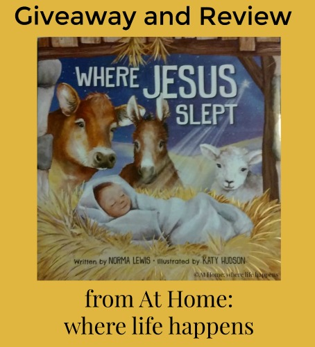 where-jesus-slept-giveaway-and-review
