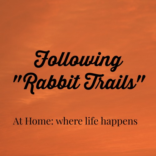 following rabbit trails