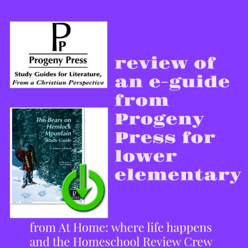 review of Progeny Press