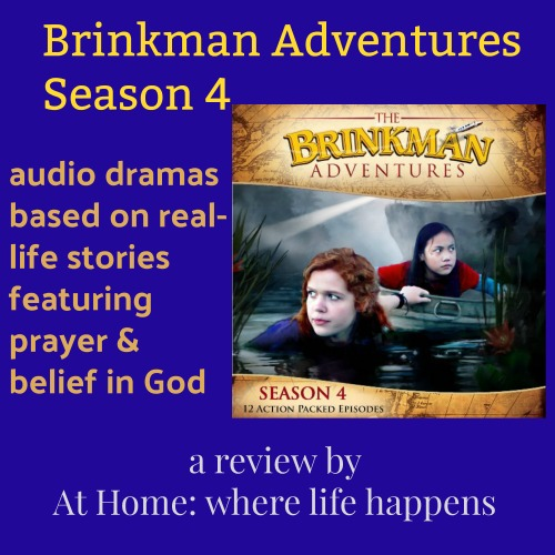 Brinkman Adventures review image