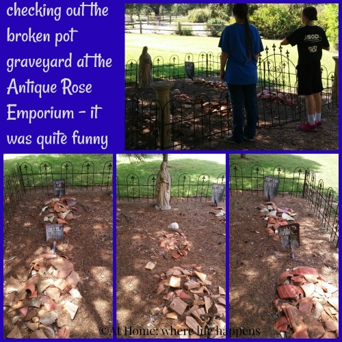broken pot graveyard