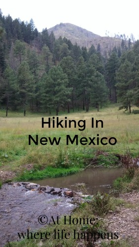 Hiking In NM