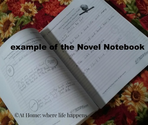 Novel Notebook
