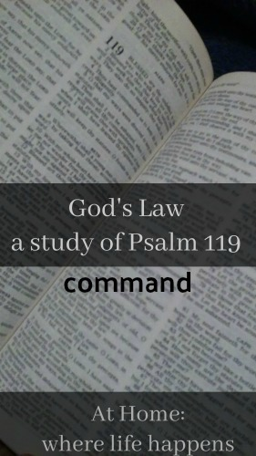 God's Law command