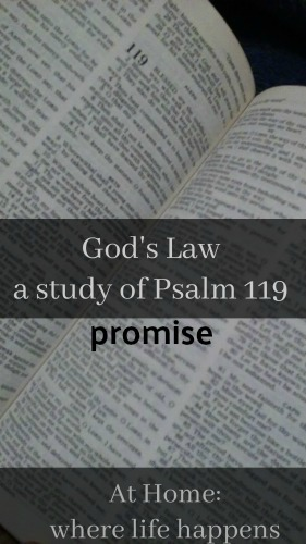 God's Law promise