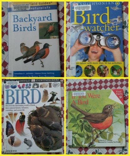 bird books set 1