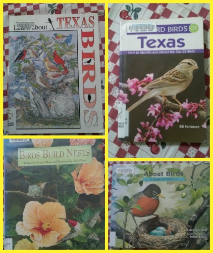 bird books set 2