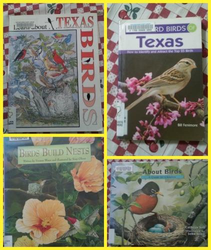 bird books set 2
