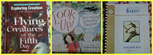bird books set 3