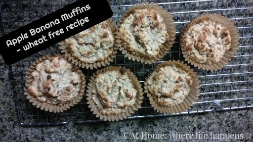 _2 apple banana muffins wheat free
