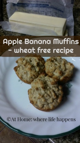 Apple Banana Muffins wheat free