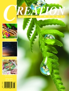 CI Sum15 Cover Pages