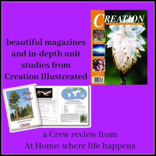Creation Illustrated review
