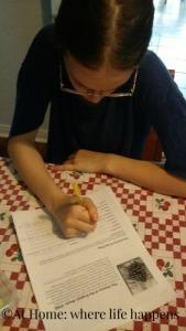 Miss L working on pine trees unit study