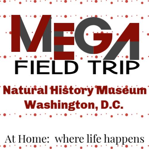 Mega Field Trip - Natural History Museum