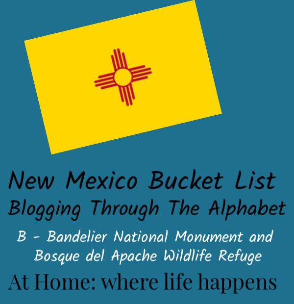 Blogging Through The Alphabet B image