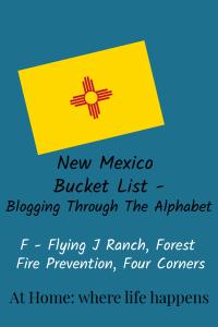 Blogging Through The Alphabet F vertical image