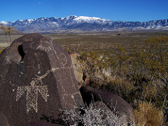 image from Three Rivers Petroglyph Site | www.blm.gov/nm/threerivers