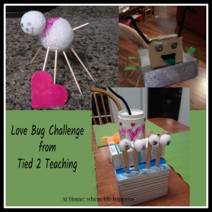 Love Bug Challenge